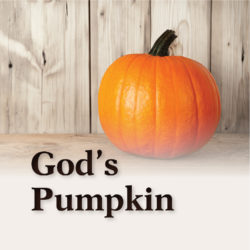 Tract: God's Pumpkin (Package of 10)