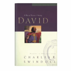 Paperback: David (Great Lives Series #1)