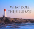 DVD: What Does the Bible Say? – Set of 3 DVDs – The Judgment Seat of Christ