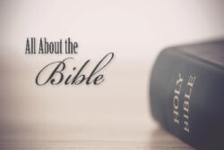 DVD: Transformed by Grace – Series: All About the Bible