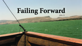 DVD: Transformed by Grace – Series: Failing Forward
