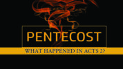 DVD: Transformed by Grace – Series: What Happened in Acts 2?